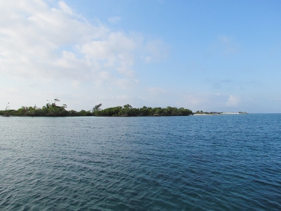 A View of the the south end of South Long Cocoa Cay       Belize